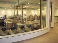 Fertilización con óvulos y espermios congelados:  El dilema de decirle o no a un hijo que nació de gametos donados